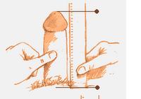 penis be erekcijos mažas kodėl ko imtis kad penis stovėtų geriau