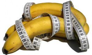 kokios nariu ir dydziu formos yra nuo to kokio nario ilgis ir storis